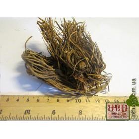 Валериана лекарственная корень (Valeriana officinalis  L.)