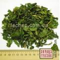 Черемша лист сухой (Allium ursinum)