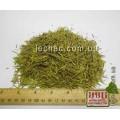Можжевельник обыкновенный хвоя (Juniperus communis)