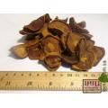 Груша дикая плоды (Pyrus communis)