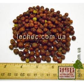 Можжевельник колючий(красный) плод (Juniperus oxycedrus)