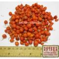 Ландыш майский плоды (Convallaria majalis)