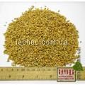 Пшеница мягкая семена для проращивания