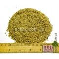 Канареечник семена для посева  (Phalaris canariensis)
