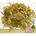 Ясень обыкновенный семена  (Fraxinus)