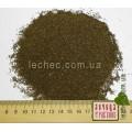 Лофант анисовый семена для посева (Lophanthus anisatus Benth.)