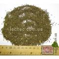 Синяк обыкновенный семена для посева (Echium vulgare). ТОВАРА НЕТ В НАЛИЧИИ!!!