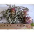 Василек синий лепестки (Centaurea cyanus  L.). ТОВАРА НЕТ В НАЛИЧИИ!!!