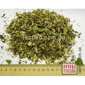 Груша дикая цвет (Pyrus communis)
