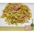 Пион розовый лепестки (Paeonia)